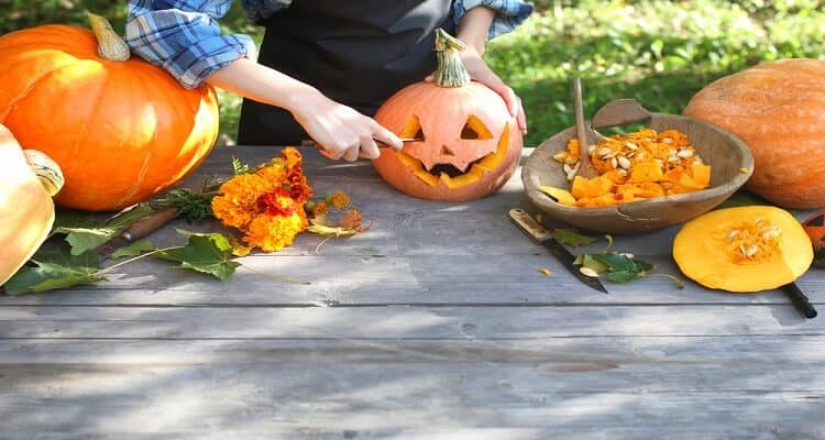 Best Knives For Pumpkin Carving